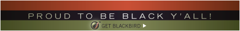 blackbirdpride