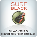 surfblackbird