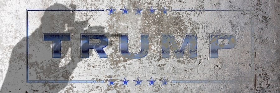trumpwall